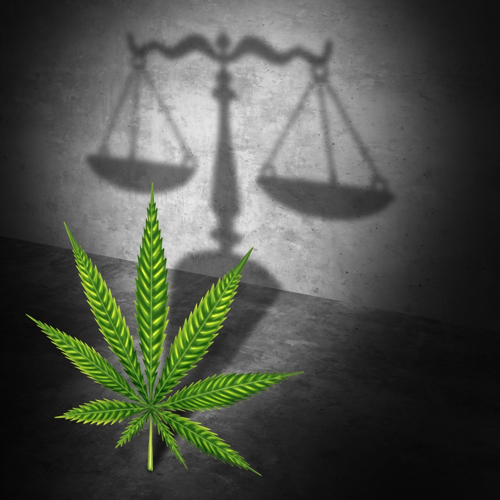Cannabis Law: A Pot of Gold for Lawyers